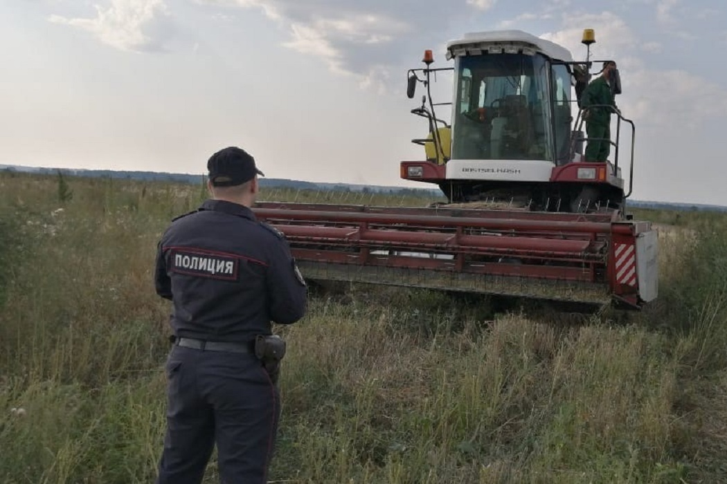 В Тюменской области уничтожили почти 45 гектаров конопли