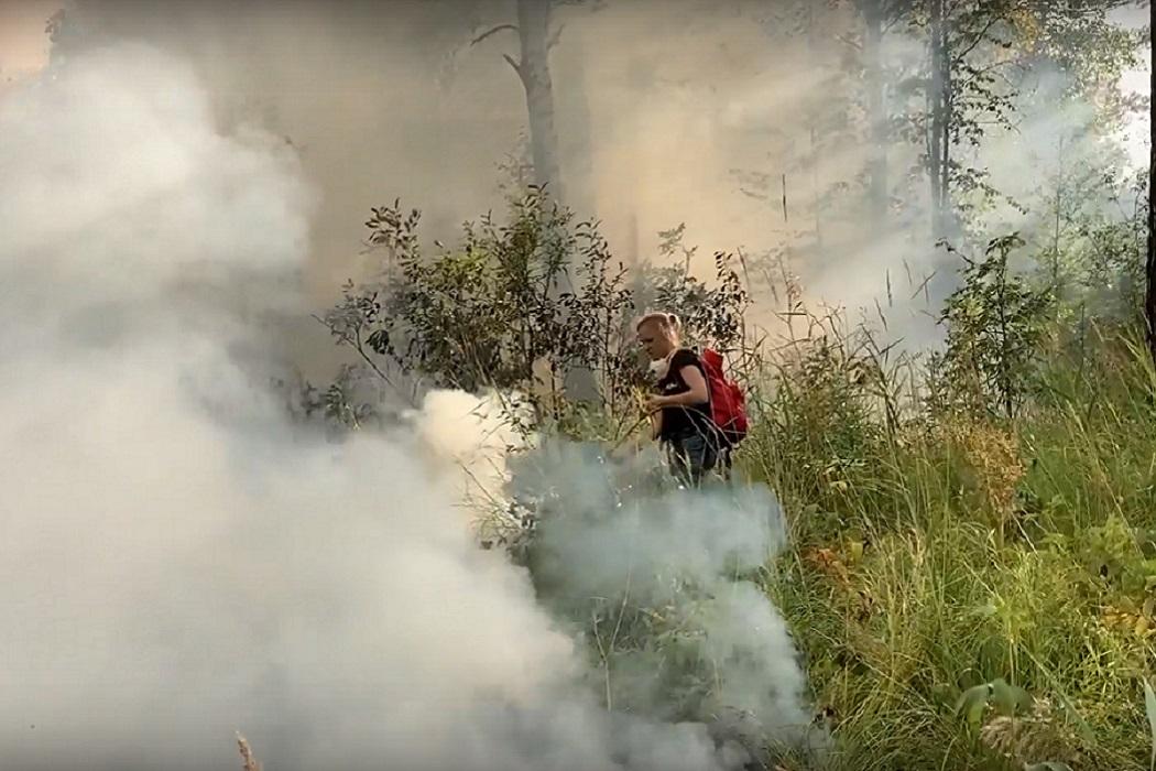 Для тушения пожара под Первоуральском Авиалесоохрана собирает волонтёров