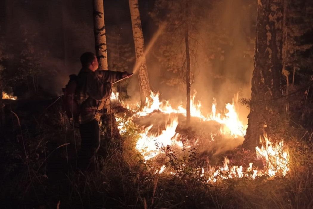 На Урале 83 человека эвакуированы из-за угрозы перехода огня на садовые дома