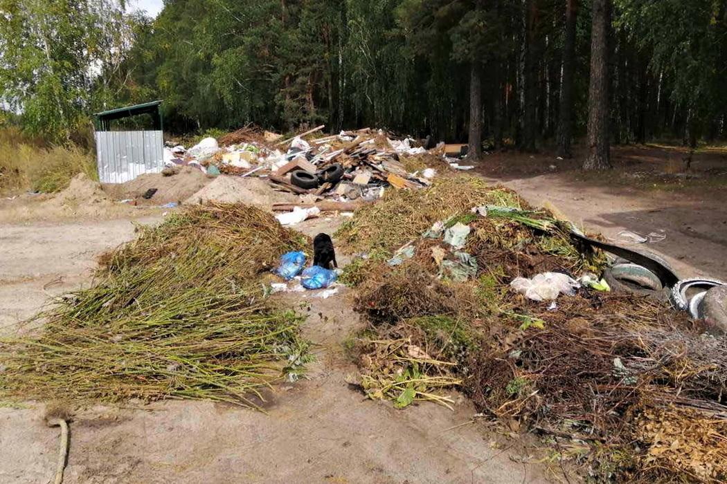 В Тюмени неизвестные устроили бардак на мусорной площадке