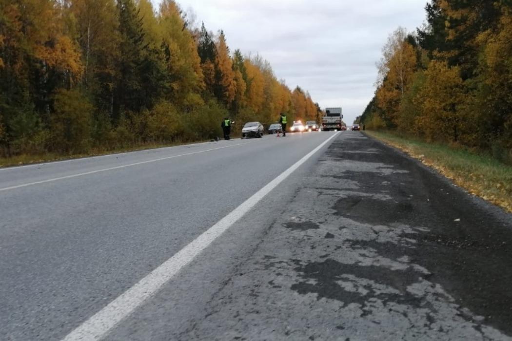 В ДТП на трассе Екатеринбург-Полевской погиб лось и пострадали два человека