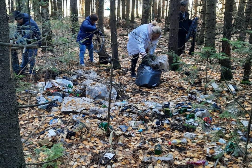 Из природного парка Ханты-Мансийска вывезли 60 кубометров мусора 1