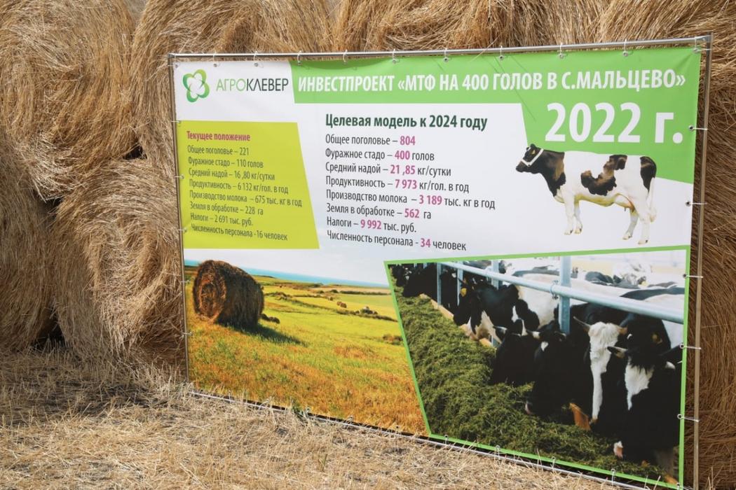 В Курганской области к 2022 году построят крупную молочно-товарную ферму