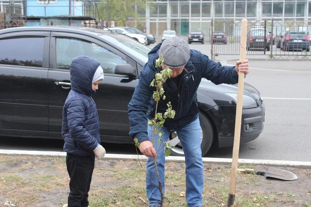 Саженец + посадка деревьев + посадка + высадка + высадка деревьев + дерево + деревья + мальчик + ребёнок