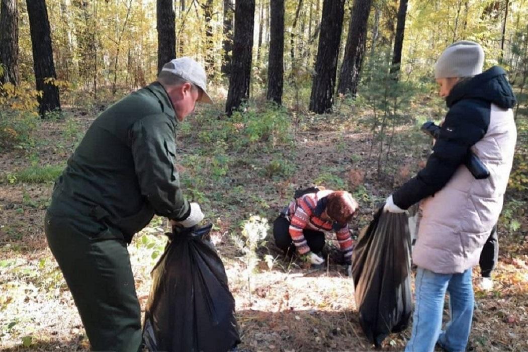 Уборка мусора + субботник + мусор + свалка + несанкционированная свалка + свалка в лесу