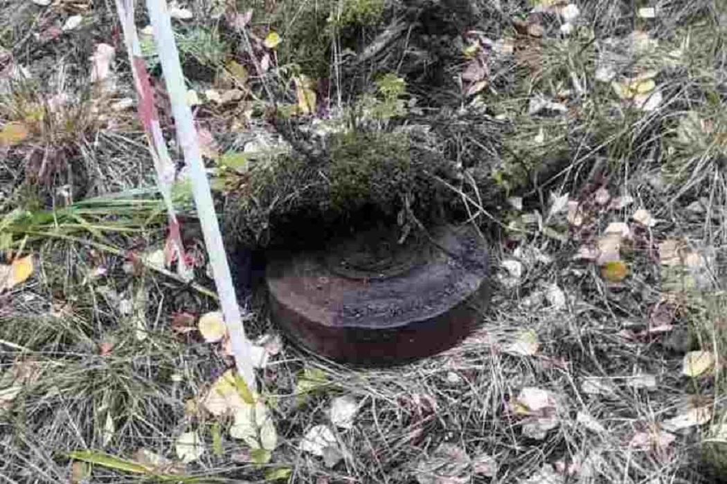 В Тюменском районе нашли мину