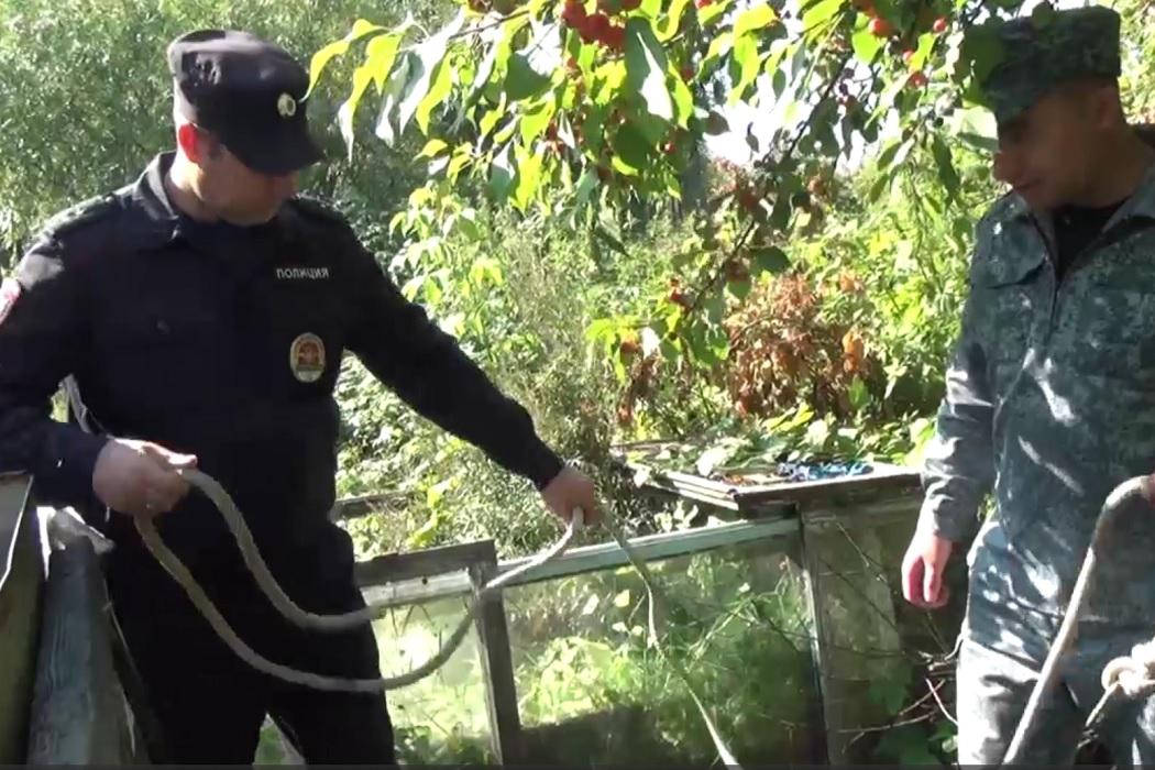 В Тюменской области полицейские спасли упавшую в колодец женщину