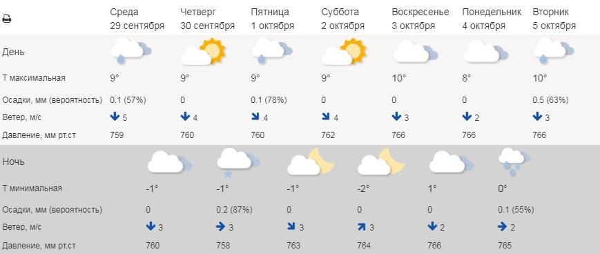 В Зауралье ночью на этой неделе обещают снег