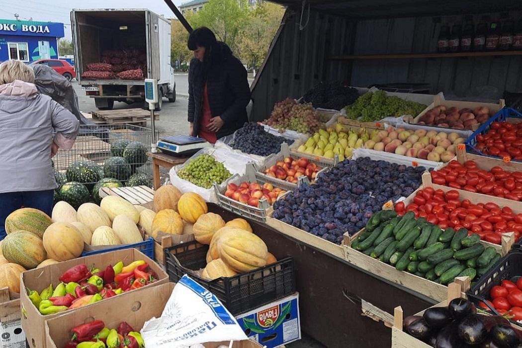 Ярмарка +арбузы + арбуз + уличная торговля + фрукты + овощи + дыни + сливы + тыквы + перцы + перец + огурцы + помидоры + дыня + виноград + нектарины + груши + персики