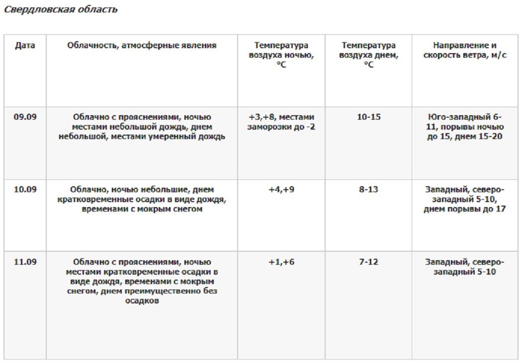 К выходным в Свердловской области ожидается похолодание и мокрый снег