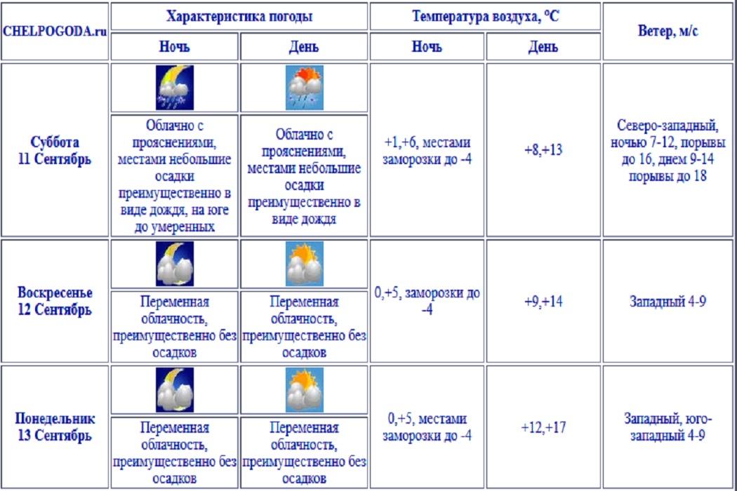 Заморозки и сильный ветер до 18 м/с ожидаются в Челябинской области на выходных