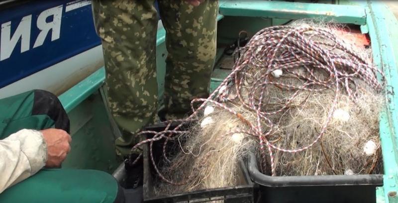 Браконьера из Тобольска осудят за вылов особо ценной рыбы 1