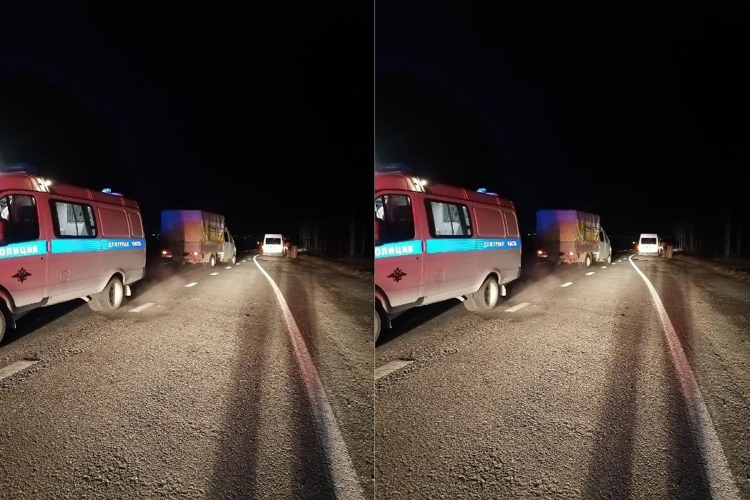 На Серовском тракте 41-летний водитель «Форда» сбил пешехода, погибшего под колёсами ГАЗели