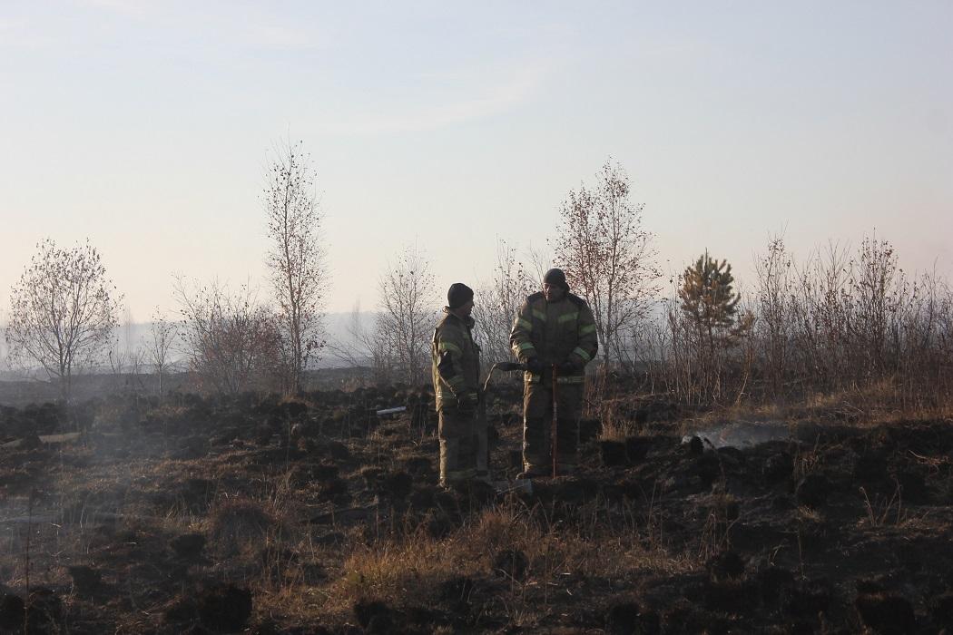 МЧС прогнозирует появление в Екатеринбурге плотного смога 15 октября