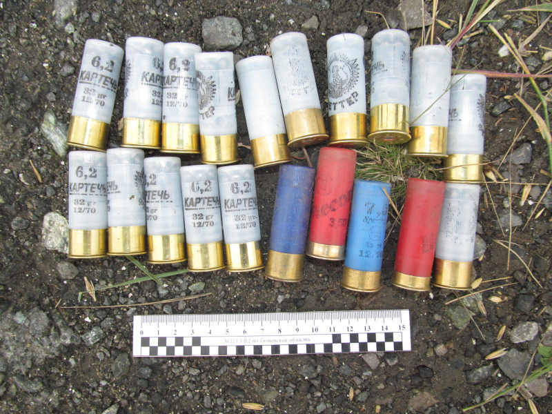 Во время охоты на уток тюменец незаконно застрелил несколько косуль 1
