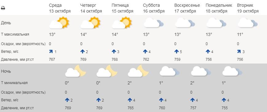 Всю неделю в Курганской области будет тепло