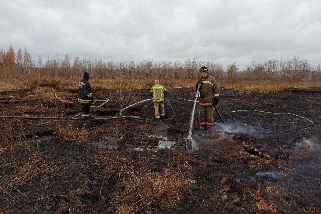 Тление торфяника в Екатеринбурге локализовано силами МЧС