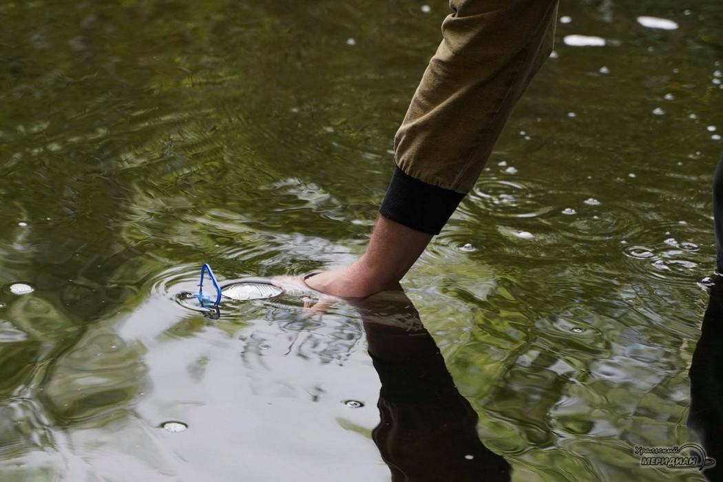Река Ольховка экология радиация
