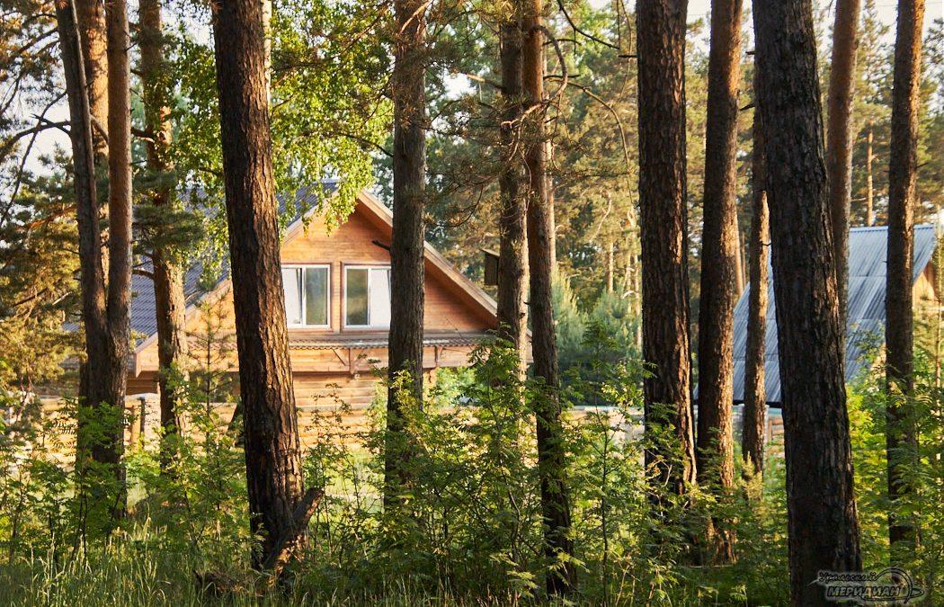 дом деревня лес деревья