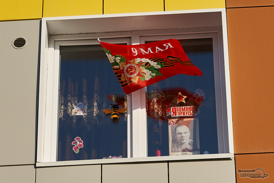 окна победы бессмертный полк