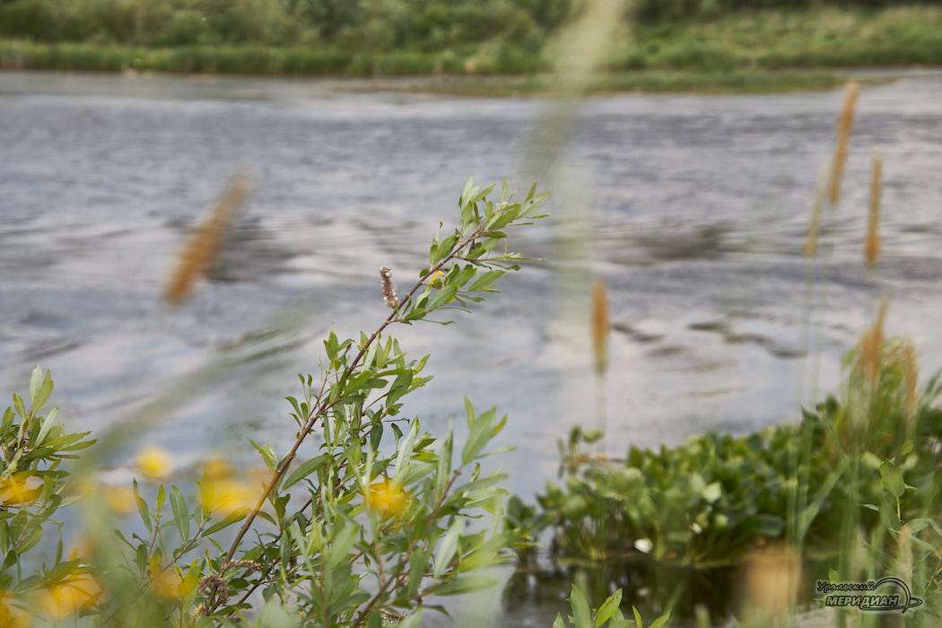 природа река вода