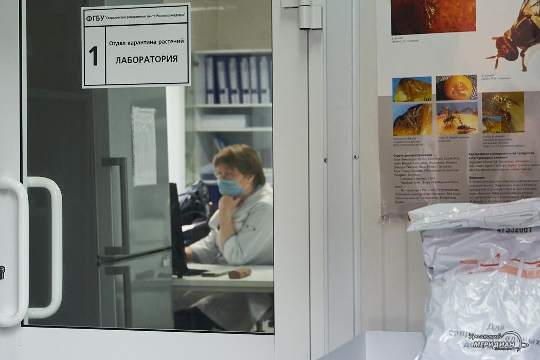 россельхознадзор лаборатория карантин растений Екатеринбург