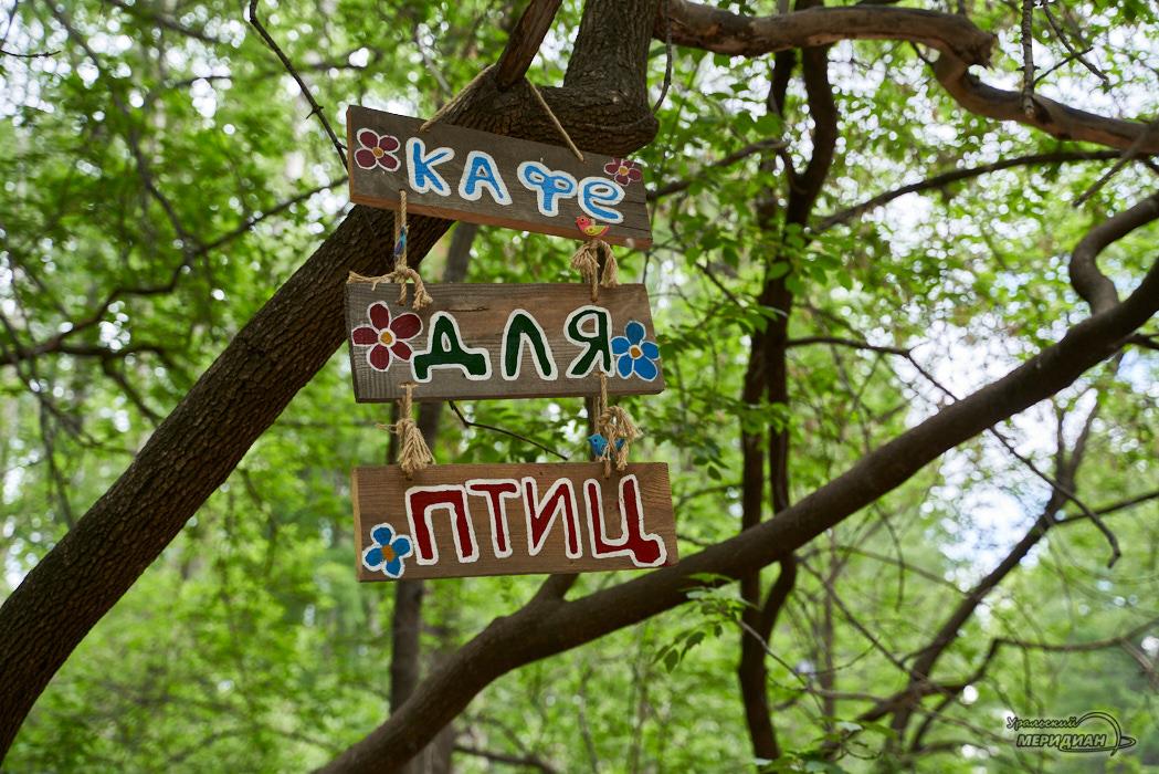 шарташский парк Екатеринбург кафе для птиц